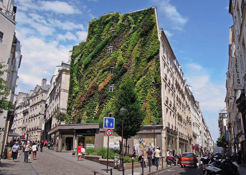 greenwall_paris_ L'Oasis D'aboukir_00