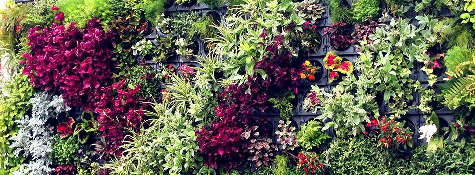wallgreen-jardins-verticais